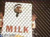 animated gif of Milk - Carton