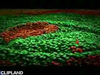 Mars Incorporated Inc., M&M's - River Of Chocolate- Hard Rock