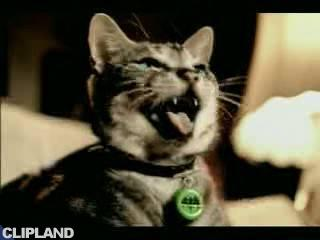 Bacardi Bacardi Breezer - Tomcat: Goal (There's Latin Spirit In Everyone.)