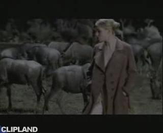 Yvonne Catterfeld - Gefühle