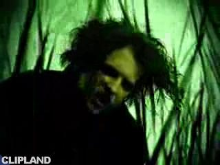 The Cure - Taking Off