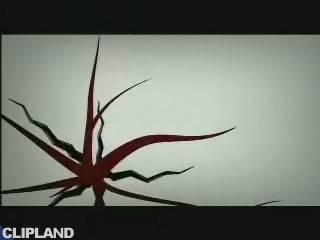 Depeche Mode - Enjoy The Silence '04