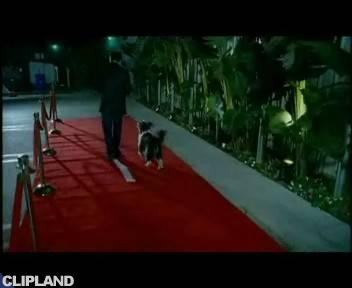 """Bloodhound Gang """"Uhn Tiss Uhn Tiss Uhn Tiss"""" (2005)"""